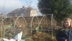 Allotment 4