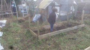Allotment 5